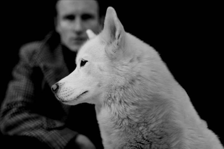 Micko Westmoreland with beautiful husky dog